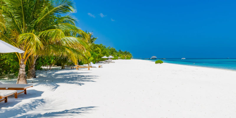 An Ideal Setting Up of Holidays - Holidays in India