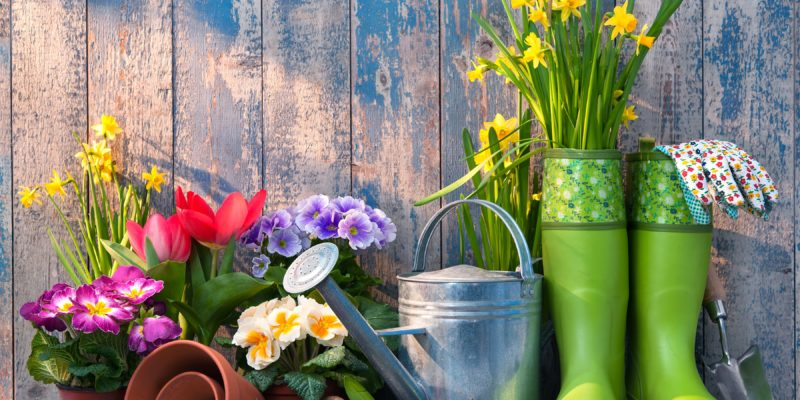 How to Get The Best Gardening Services in South London