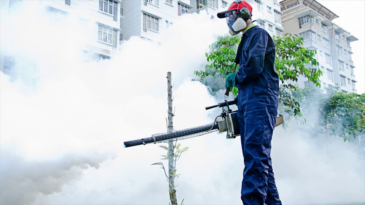 Pest Control Benefits For Home Owners