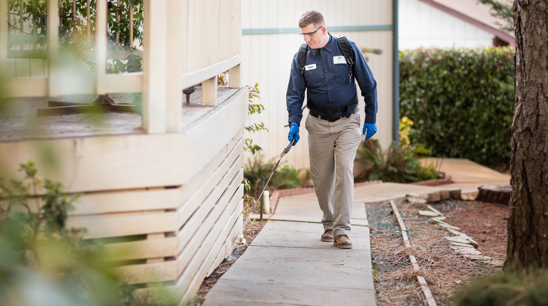 Pest Control Penrith Can Ensure The Complete Extermination of Termites