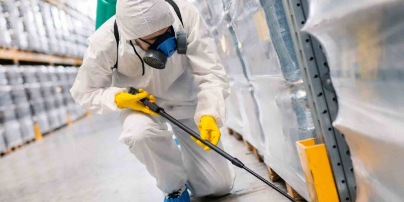 The Significance Of Proper Pest Control Services